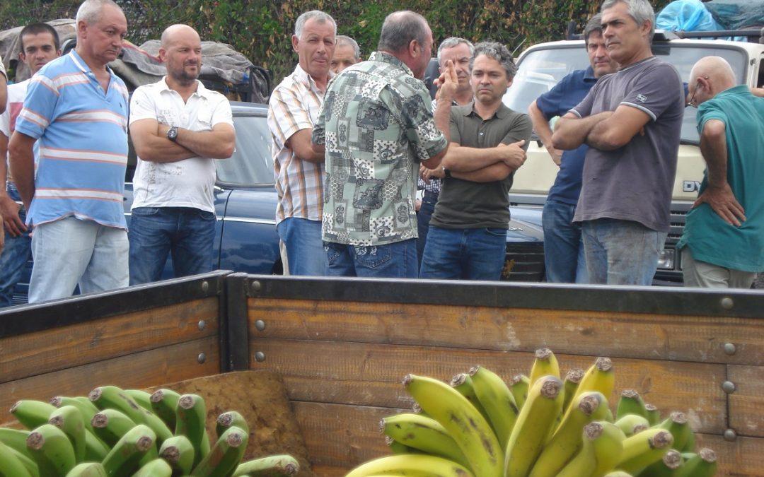 JPP solicita visita à Gesba na Ponta do Sol