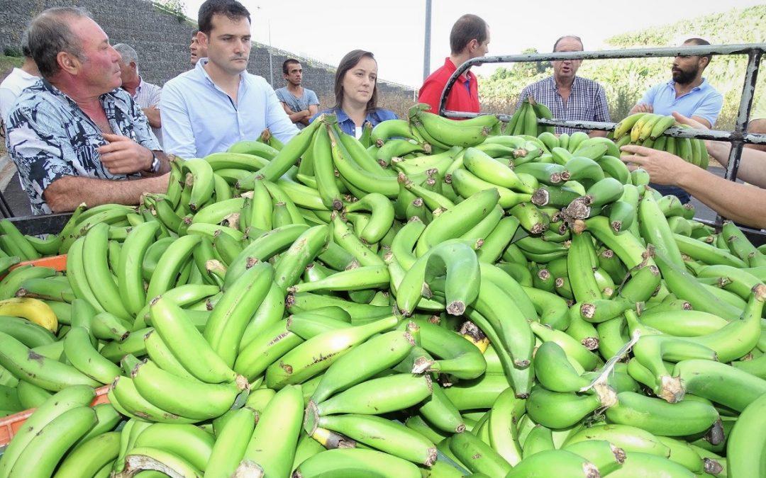 JPP denuncia falta de palavra do Governo no pagamento dos apoios aos agricultores